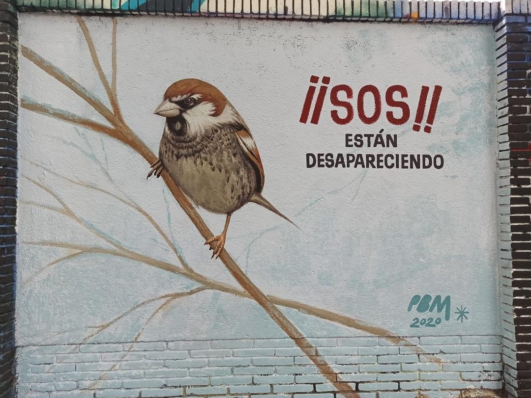 Wallspot - evalop - evalop - Project 12/08/2020 - Barcelona - Selva de Mar - Graffity - Legal Walls - Illustration