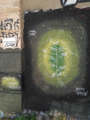 Plantas urbanas