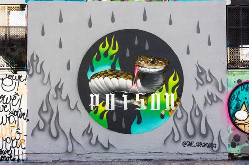 JOAN PIÑOL - Projecte 24/02/2018