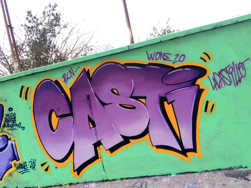 CASTI